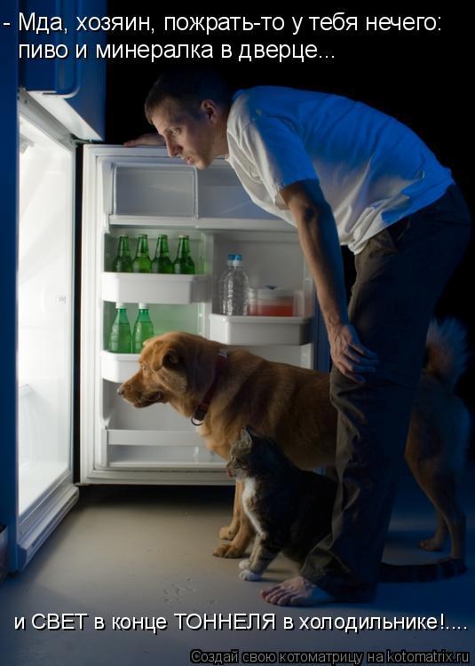 Котоматрица: - Мда, хозяин, пожрать-то у тебя нечего: пиво и минералка в дверце... и СВЕТ в конце ТОННЕЛЯ в холодильнике!....