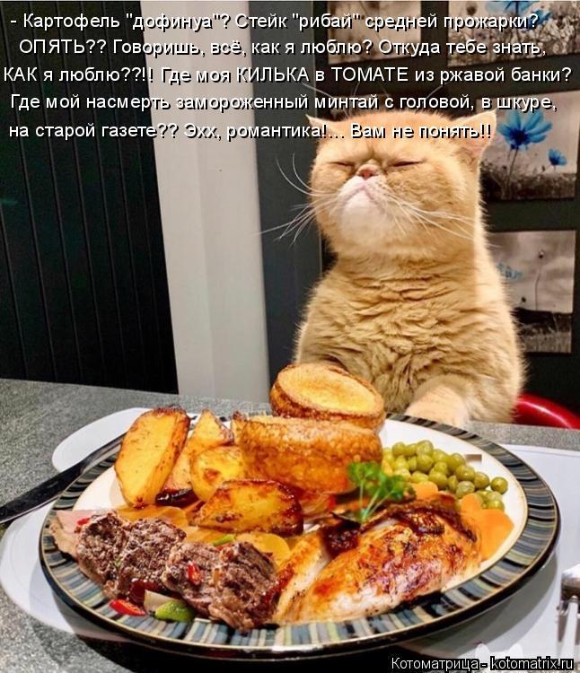 """Котоматрица: - Картофель """"дофинуа""""? Стейк """"рибай"""" средней прожарки?  ОПЯТЬ?? Говоришь, всё, как я люблю? Откуда тебе знать,  КАК я люблю??!! Где моя КИЛЬКА в ТОМ?"""