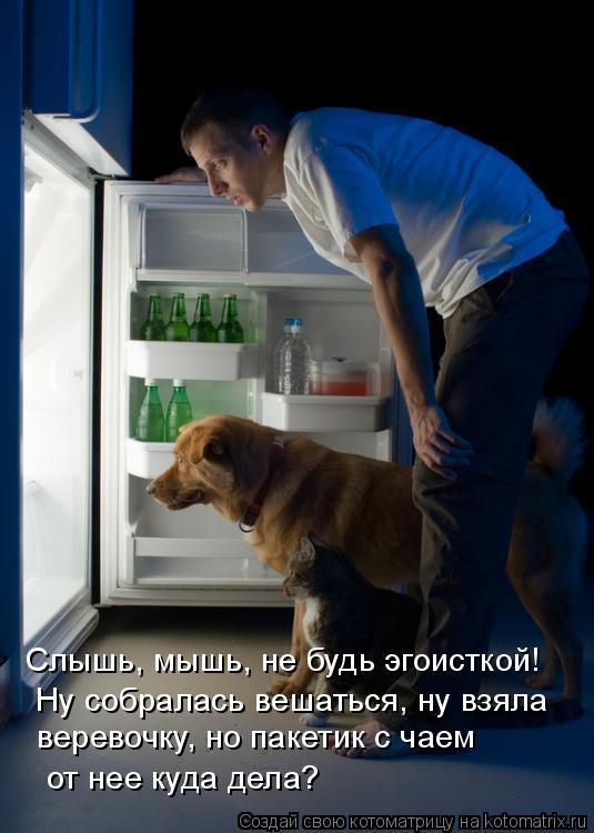 Котоматрица: Слышь, мышь, не будь эгоисткой!  Ну собралась вешаться, ну взяла  веревочку, но пакетик с чаем от нее куда дела?
