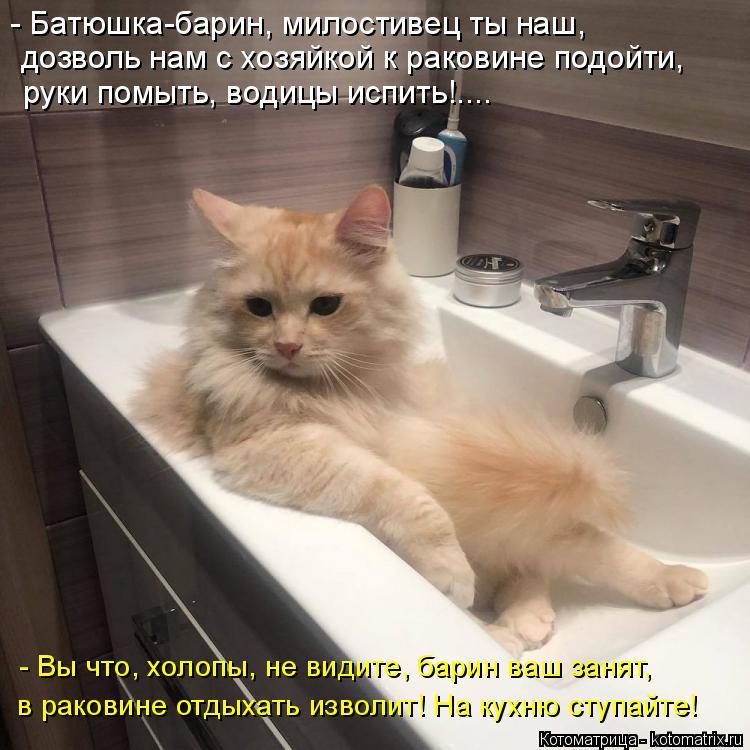 Котоматрица: - Батюшка-барин, милостивец ты наш, дозволь нам с хозяйкой к раковине подойти, руки помыть, водицы испить!.... - Вы что, холопы, не видите, барин ?