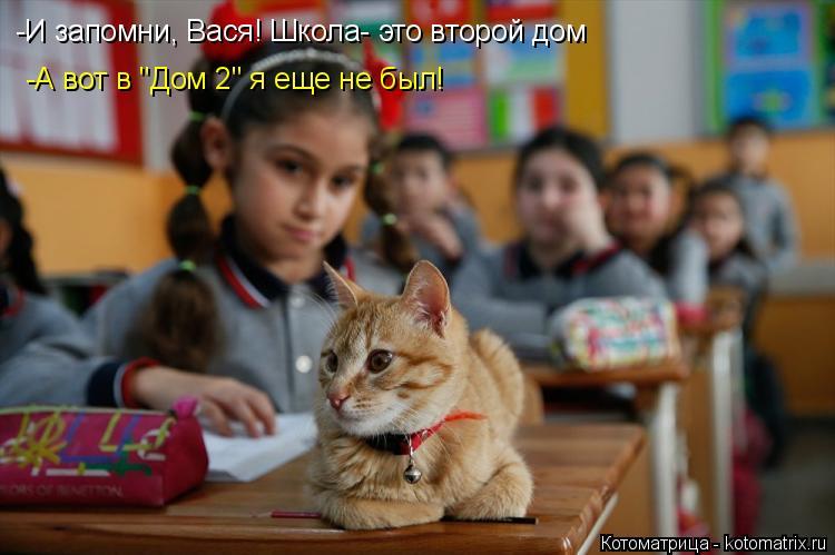 """Котоматрица: -И запомни, Вася! Школа- это второй дом -А вот в """"Дом 2"""" я еще не был!"""