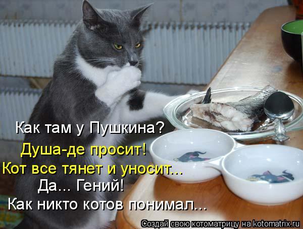 Котоматрица: Как там у Пушкина?  Душа-де просит! Да... Гений!  Как никто котов понимал... Кот все тянет и уносит...