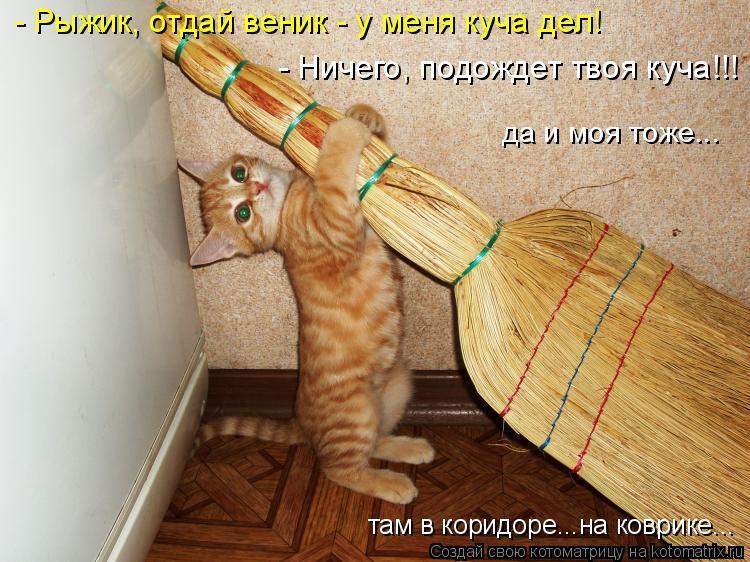 Котоматрица: - Рыжик, отдай веник - у меня куча дел! - Ничего, подождет твоя куча!!! да и моя тоже... там в коридоре...на коврике...