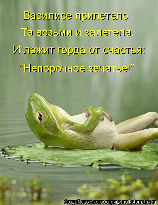 """Котоматрица: Василисе прилетело Та возьми и залетела. И лежит горда от счастья: """"Непорочное зачатье!"""""""