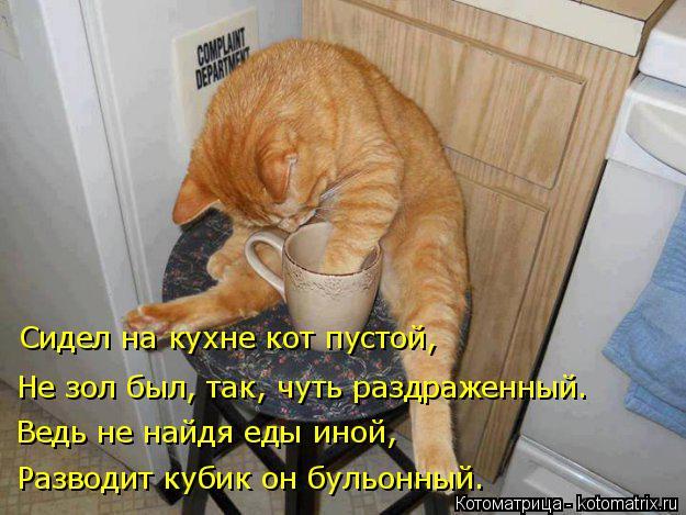 Котоматрица: Разводит кубик он бульонный. Ведь не найдя еды иной, Не зол был, так, чуть раздраженный. Сидел на кухне кот пустой,