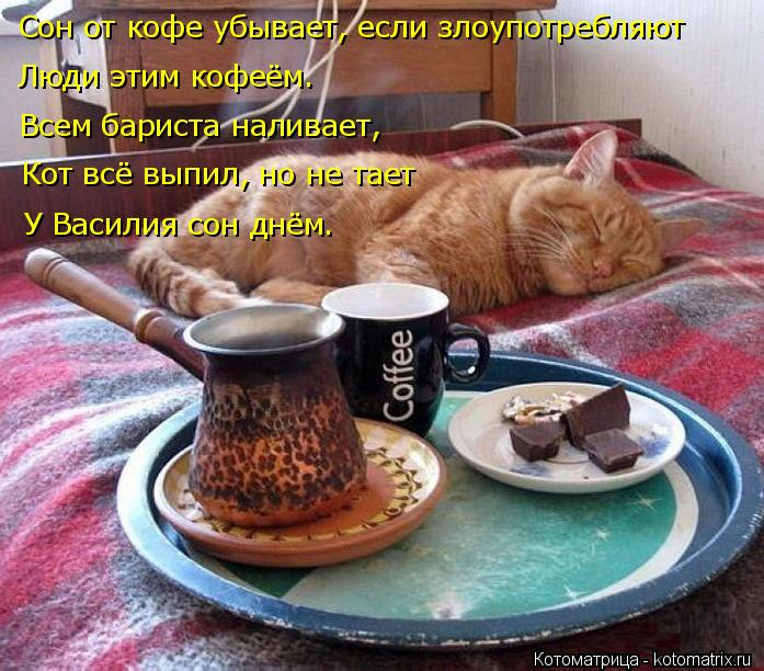 Котоматрица: Сон от кофе убывает, если злоупотребляют Люди этим кофеём. Всем бариста наливает, У Василия сон днём. Кот всё выпил, но не тает