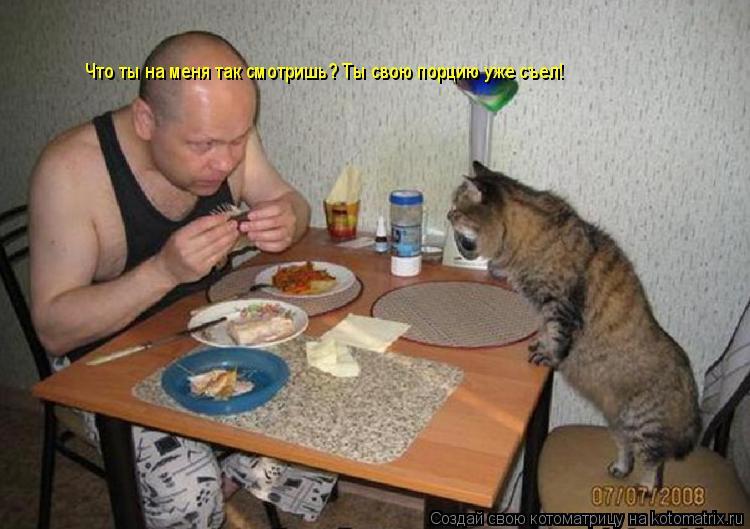 Котоматрица: Что ты на меня так смотришь? Ты свою порцию уже съел!