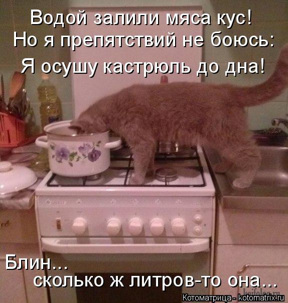 Котоматрица: Водой залили мяса кус! Но я препятствий не боюсь: Я осушу кастрюль до дна! Блин...  сколько ж литров-то она...