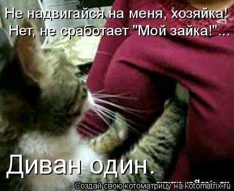 "Котоматрица: Не надвигайся на меня, хозяйка! Нет, не сработает ""Мой зайка!""... Диван один."