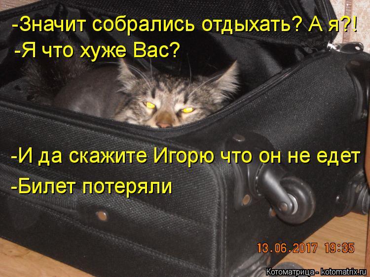 Котоматрица: -Значит собрались отдыхать? А я?! -Я что хуже Вас?  -И да скажите Игорю что он не едет -Билет потеряли