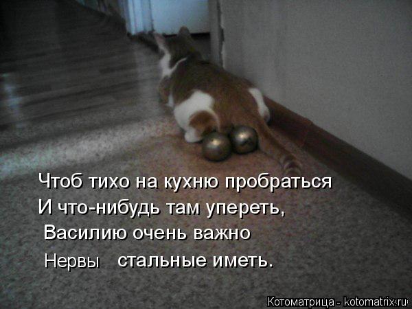 Котоматрица: Чтоб тихо на кухню пробраться И что-нибудь там упереть, Василию очень важно  Нервы стальные иметь.
