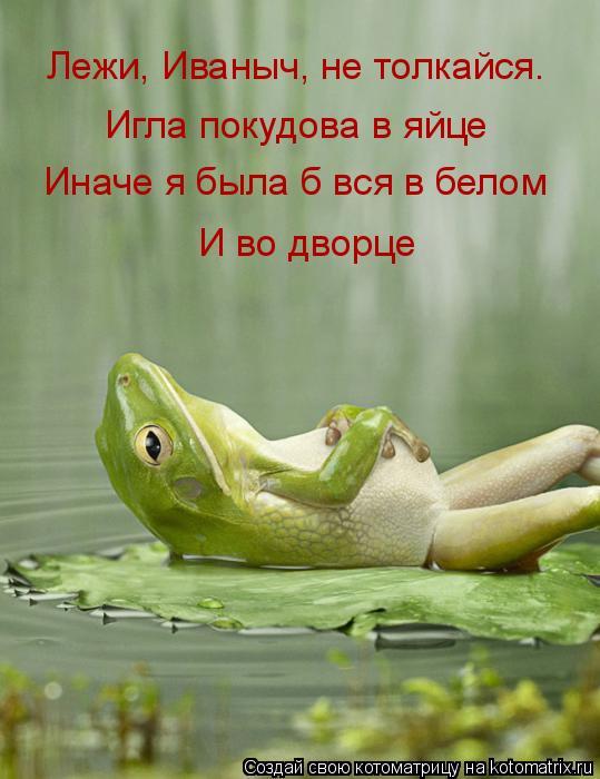 Котоматрица: Лежи, Иваныч, не толкайся. Игла покудова в яйце Иначе я была б вся в белом И во дворце