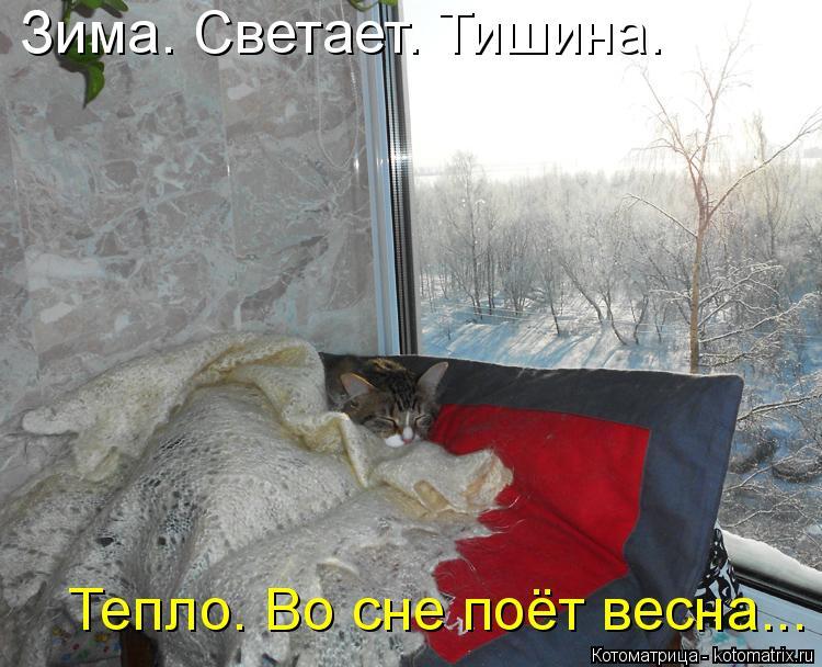 Котоматрица: Зима. Светает. Тишина. Тепло. Во сне поёт весна...