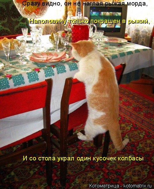 Котоматрица: Сразу видно, он не наглая рыжая морда, Наполовину только покрашен в рыжий, И со стола украл один кусочек колбасы