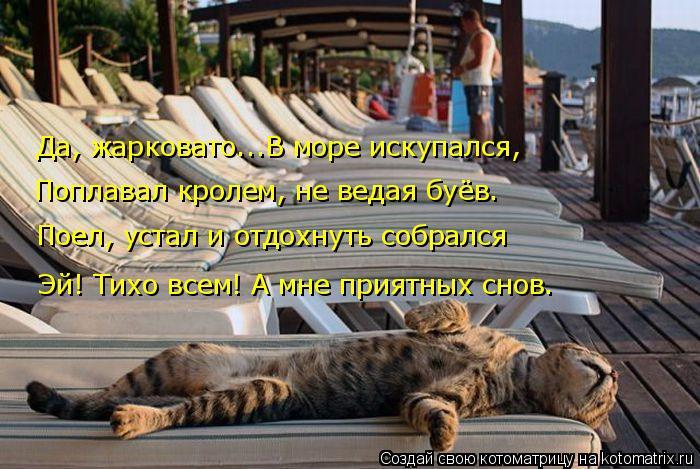 Котоматрица: Поплавал кролем, не ведая буёв. Да, жарковато...В море искупался, Поел, устал и отдохнуть собрался Эй! Тихо всем! А мне приятных снов.