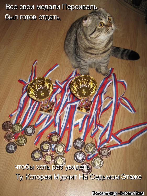 Котоматрица: Все свои медали Персиваль  был готов отдать,  чтобы хоть раз увидеть   Ту, Которая Мурчит На Седьмом Этаже