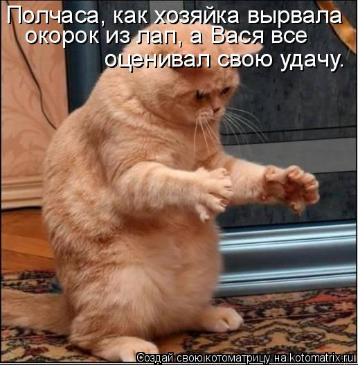 Котоматрица: Полчаса, как хозяйка вырвала  Полчаса, как хозяйка вырвала  окорок из лап, а Вася все оценивал свою удачу. оценивал свою удачу.