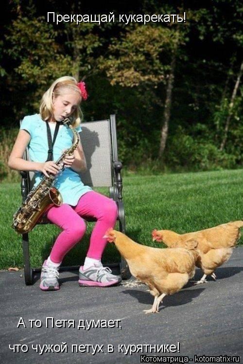 Котоматрица: Прекращай кукарекать! А то Петя думает, что чужой петух в курятнике!