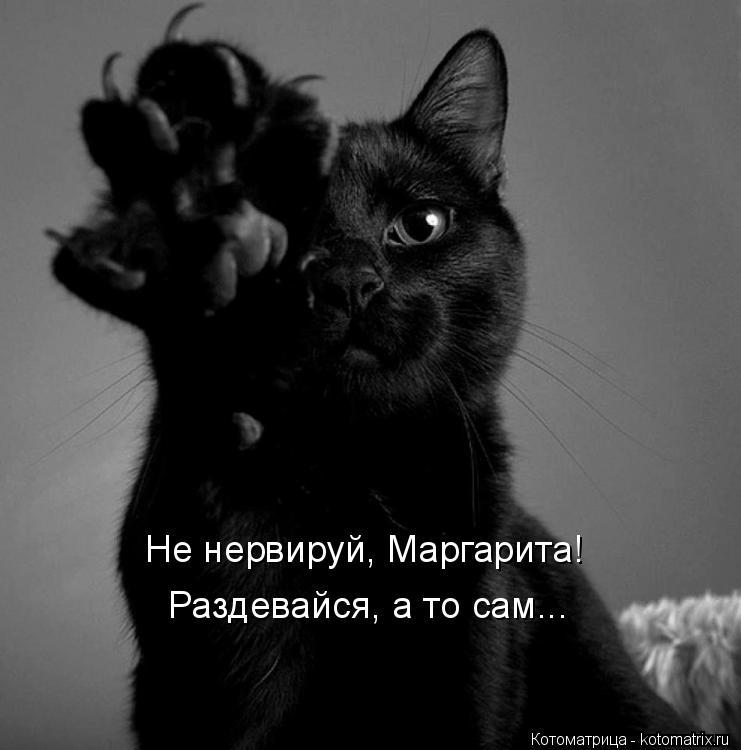 Котоматрица: Не нервируй, Маргарита! Раздевайся, а то сам...