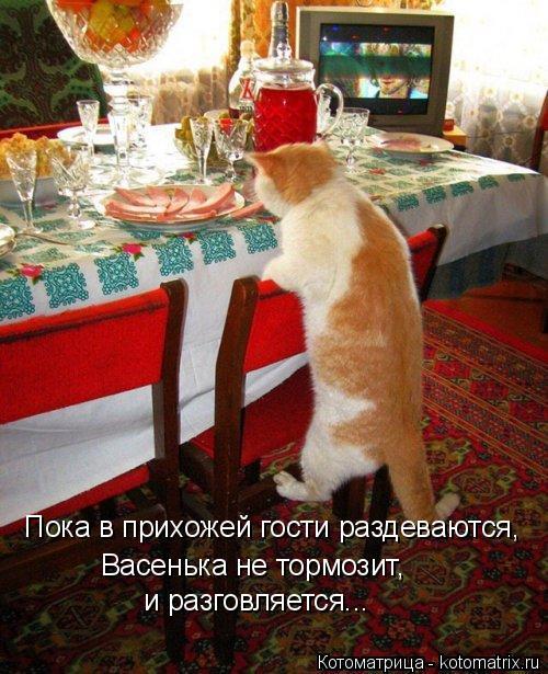 Котоматрица: Пока в прихожей гости раздеваются, Васенька не тормозит,  и разговляется...