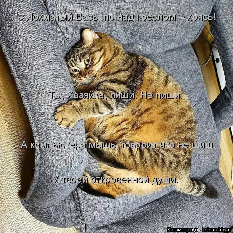 Котоматрица: Лохматый Вась, по над креслом  - хрясь! Ты, Хозяйка, пиши. Не пиши. А компьютера мышь, говорит что не шиш У твоей откровенной души.