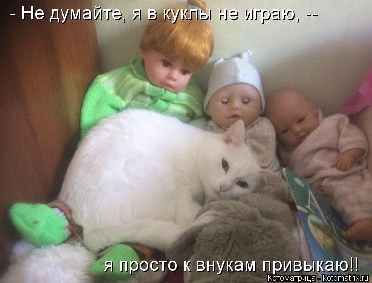 Котоматрица: - Не думайте, я в куклы не играю, --  я просто к внукам привыкаю!!