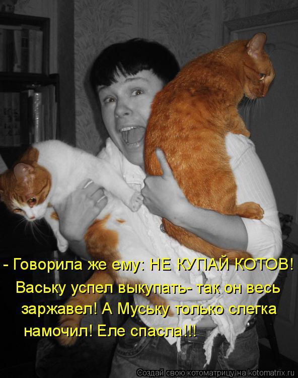 Котоматрица: - Говорила же ему: НЕ КУПАЙ КОТОВ! заржавел! А Муську только слегка Ваську успел выкупать- так он весь намочил! Еле спасла!!!