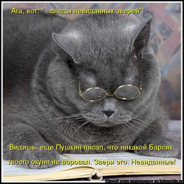"""Котоматрица: Ага, вот: """"...следы невиданных зверей""""!  Видишь, еще Пушкин писал, что никакой Барсик твоего окуня не воровал. Звери это. Невиданные!"""