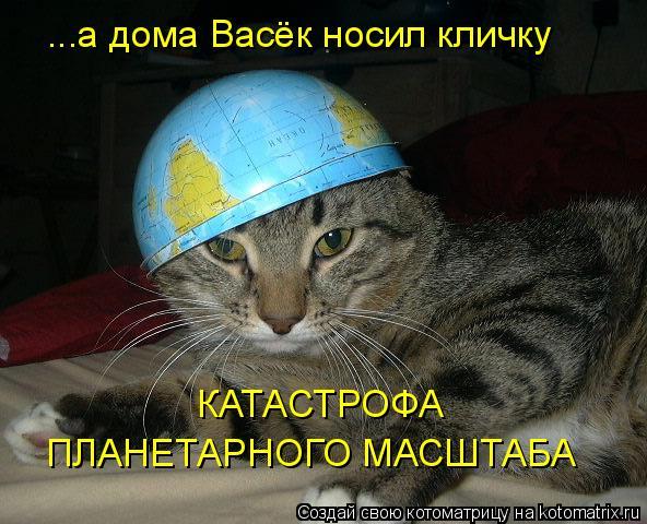 Котоматрица: ...а дома Васёк носил кличку КАТАСТРОФА ПЛАНЕТАРНОГО МАСШТАБА