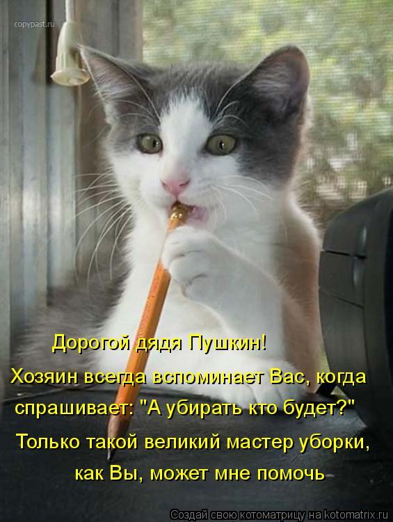 """Котоматрица: Дорогой дядя Пушкин!  Хозяин всегда вспоминает Вас, когда спрашивает: """"А убирать кто будет?""""  Только такой великий мастер уборки,  как Вы, може"""