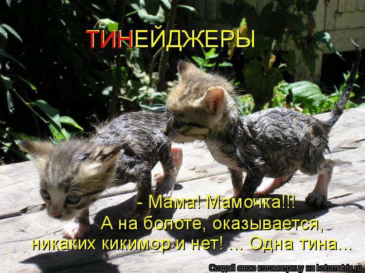 Котоматрица: ТИНЕЙДЖЕРЫ ТИН - Мама! Мамочка!!! А на болоте, оказывается, никаких кикимор и нет! ... Одна тина...