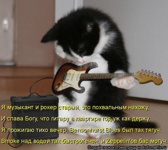Котоматрица: Я музыкант и рокер старый, это похвальным нахожу, И слава Богу, что гитару в квартире год уж как держу. Я прожигаю тихо вечер, Bensonhurst Blues был та