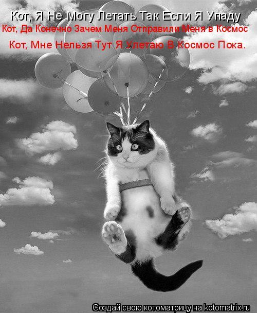 Котоматрица: Кот, Я Не Могу Летать Так Если Я Упаду Кот, Да Конечно Зачем Меня Отправили Меня в Космос Кот, Мне Нельзя Тут Я Улетаю В Космос Пока.