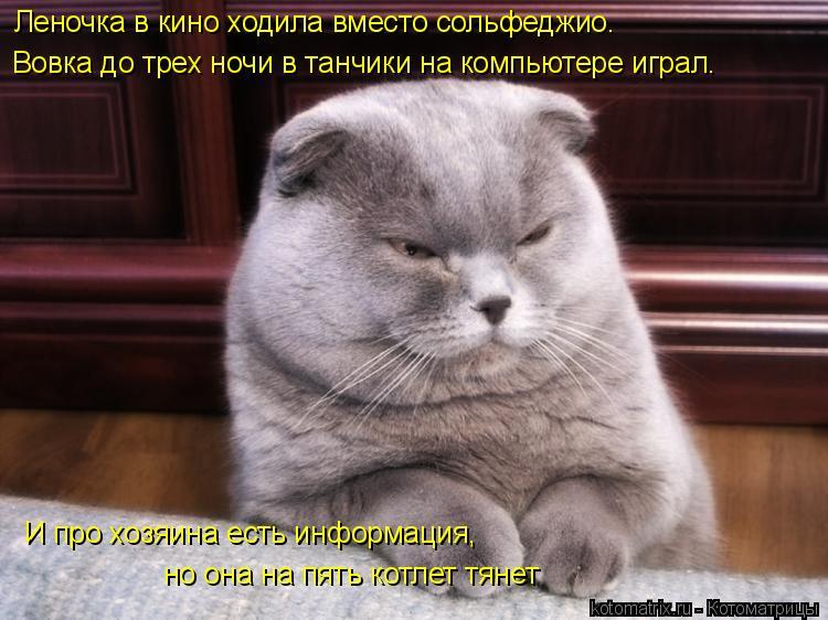 Котоматрица: Леночка в кино ходила вместо сольфеджио. Вовка до трех ночи в танчики на компьютере играл. И про хозяина есть информация,  но она на пять кот?
