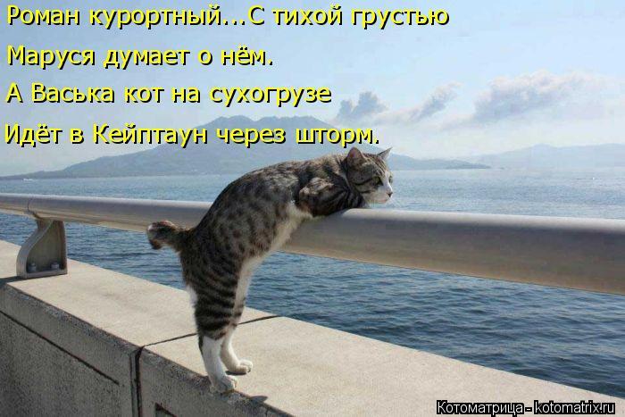 Котоматрица: Роман курортный...С тихой грустью  А Васька кот на сухогрузе Идёт в Кейптаун через шторм. Маруся думает о нём.