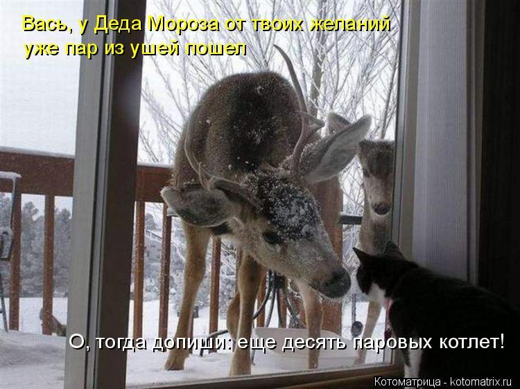 Котоматрица: Вась, у Деда Мороза от твоих желаний уже пар из ушей пошел О, тогда допиши: еще десять паровых котлет!