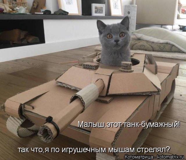 Котоматрица: Малыш,этот танк-бумажный! так что,я по игрушечным мышам стрелял?