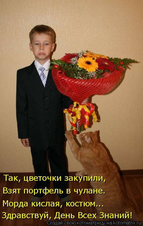 Котоматрица: Так, цветочки закупили, Взят портфель в чулане. Морда кислая, костюм... Здравствуй, День Всех Знаний!