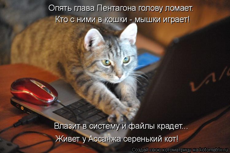 Котоматрица: Опять глава Пентагона голову ломает. Кто с ними в кошки - мышки играет! Влазит в систему и файлы крадет... Живет у Ассанжа серенький кот!