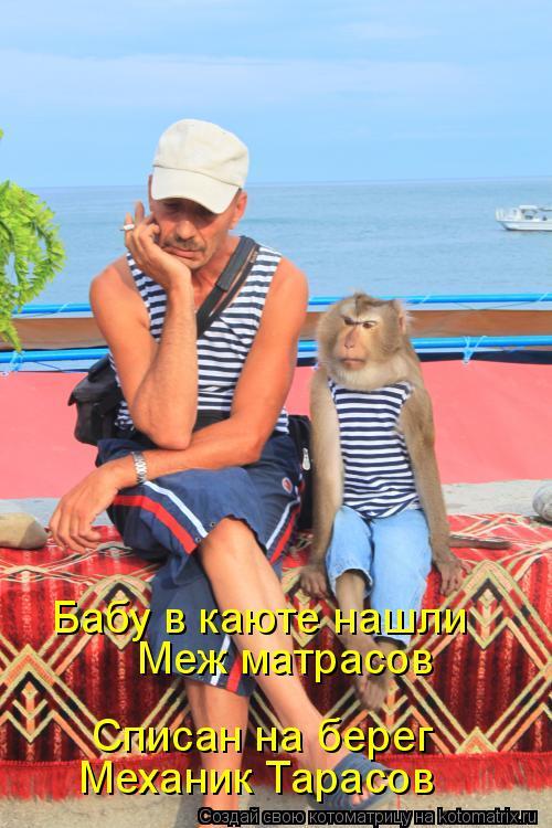 Котоматрица: Бабу в каюте нашли Меж матрасов Списан на берег Механик Тарасов