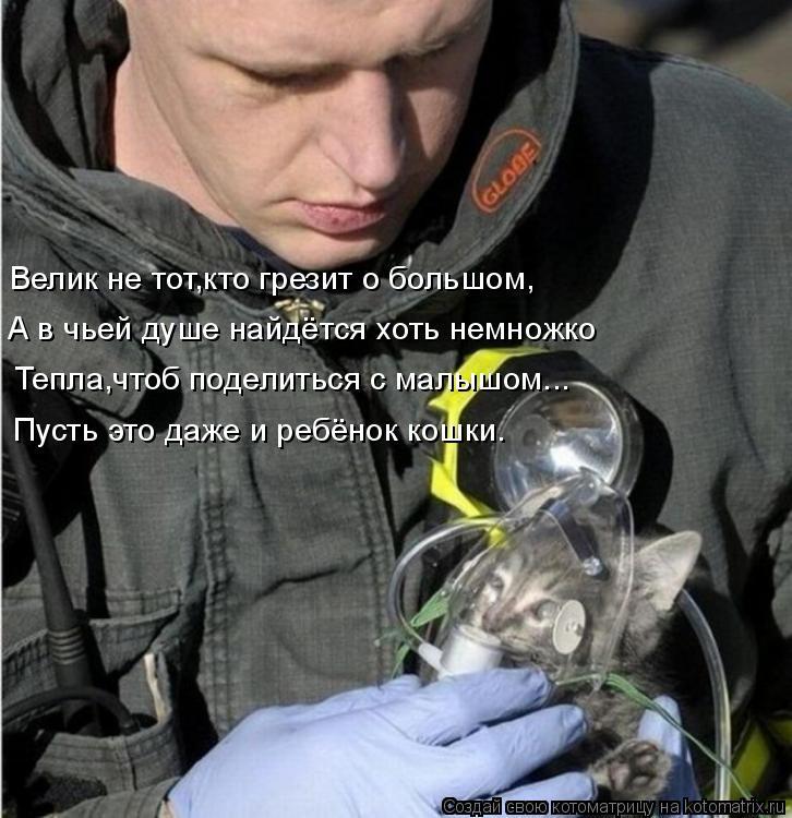 Котоматрица: А в чьей душе найдётся хоть немножко Велик не тот,кто грезит о большом, Тепла,чтоб поделиться с малышом... Пусть это даже и ребёнок кошки.