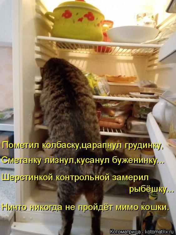 Котоматрица: Пометил колбаску,царапнул грудинку, Сметанку лизнул,кусанул буженинку... Шерстинкой контрольной замерил рыбёшку... Ничто никогда не пройдё?