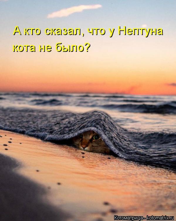 Котоматрица: А кто сказал, что у Нептуна кота не было?