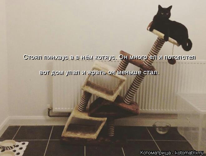 Котоматрица: Стоял пинхаус а в нём котяус. Он много ел и потолстел  вот дом упал и жрать он меньше стал.  вот дом упал и жрать он меньше стал.