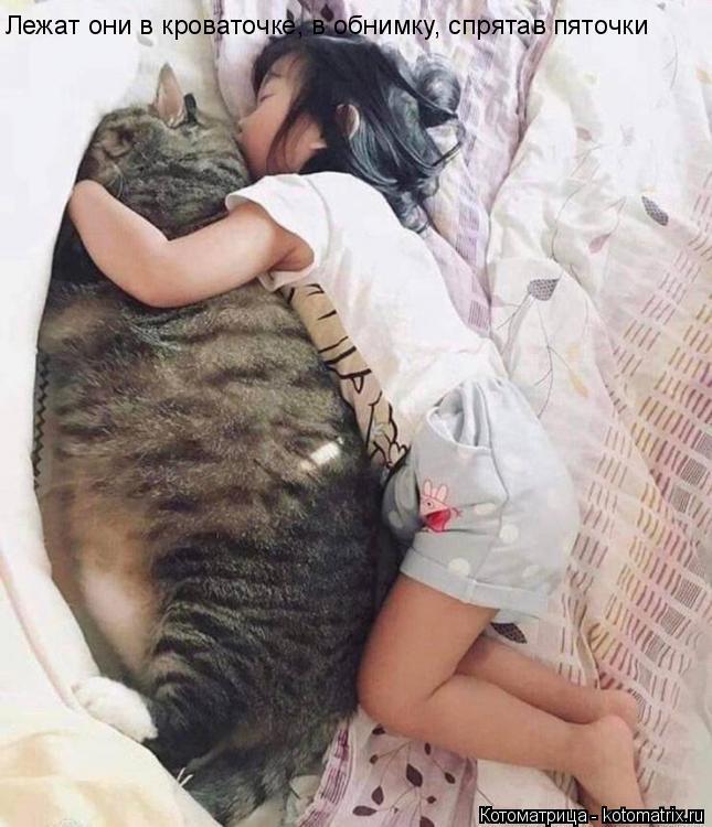 Котоматрица: Лежат они в кроваточке, в обнимку, спрятав пяточки