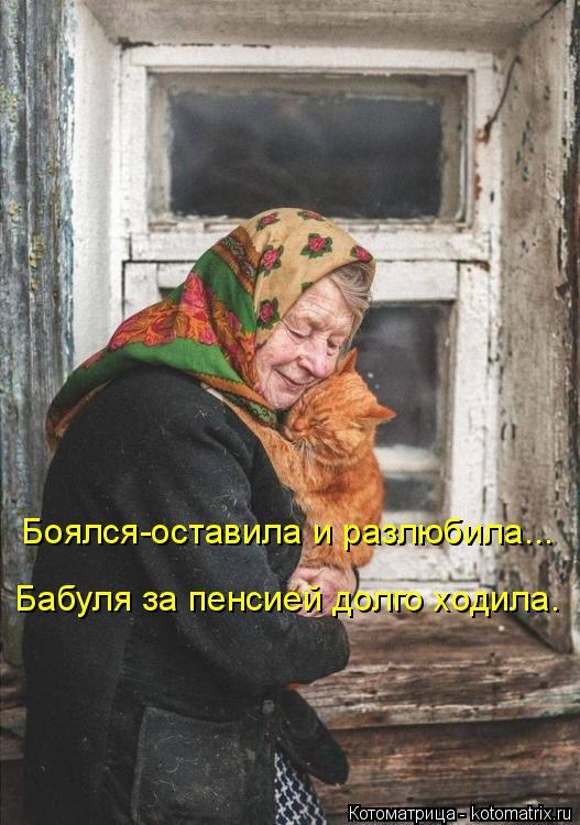 Котоматрица: Боялся-оставила и разлюбила... Бабуля за пенсией долго ходила.