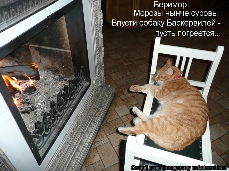 Котоматрица: Беримор!... Морозы нынче суровы. Впусти собаку Баскервилей -  пусть погреется...