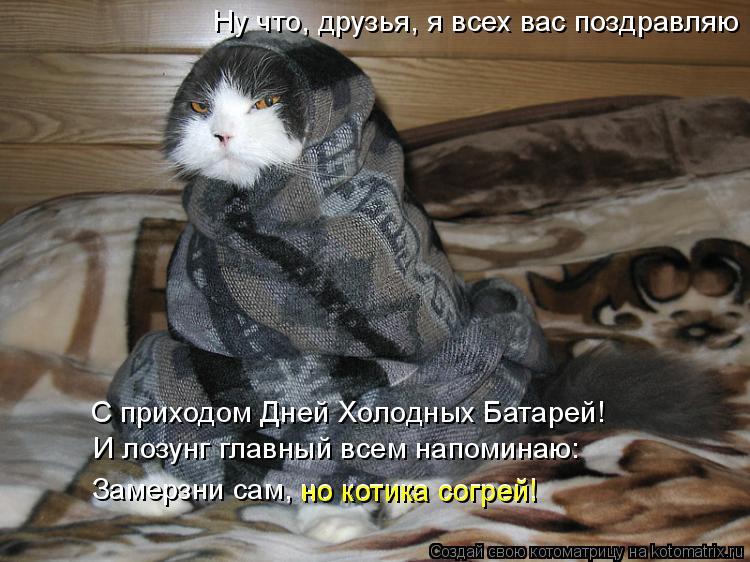 Котоматрица: Ну что, друзья, я всех вас поздравляю И лозунг главный всем напоминаю: Замерзни сам, но котика согрей! но котика согрей! С приходом Дней Холод