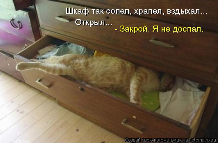 Котоматрица: Шкаф так сопел, храпел, вздыхал... - Закрой. Я не доспал. Открыл...