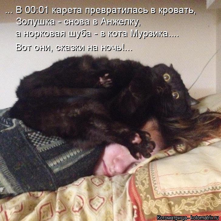 Котоматрица: Золушка - снова в Анжелку, ... В 00:01 карета превратилась в кровать,  а норковая шуба - в кота Мурзика.... Вот они, сказки на ночь!...